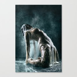 Alpha Canvas Print
