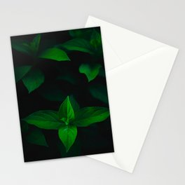 Green Mint Leaves With A Black Background Stationery Cards