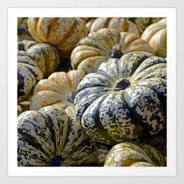 Autumn Photography - Old Pumpkins Art Print