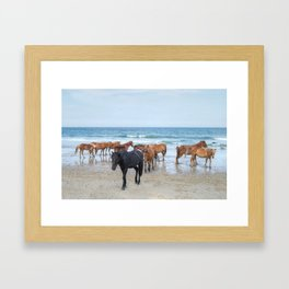 Outer Banks, Corolla, NC, Stallion and his Harem Matted Print Framed Art Print