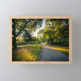 Gardens at Back Bay Fens Framed Mini Art Print