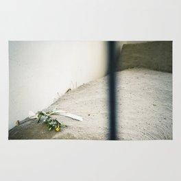 Jail Cell : Sachsenhausen Concentration Camp, Oranienburg, Germany. Rug