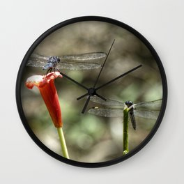 Two Dragonflies Wall Clock