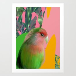 Love Bird with Palms Art Print