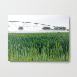 Idaho Farmlands Metal Print
