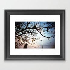 SPZ Framed Art Print