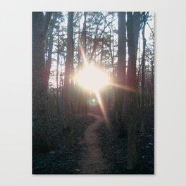 Towards the light. Canvas Print