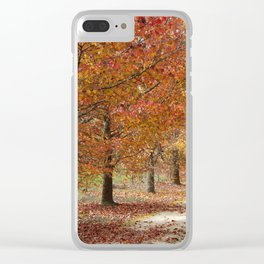 Sun Lit Tree Lined Avenue in Autumn Clear iPhone Case