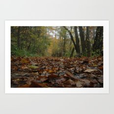 A quiet walk. Art Print