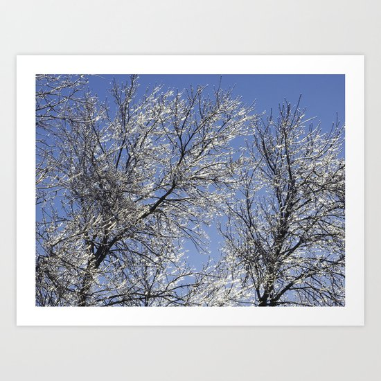 Sparkling Iced Branches Art Print