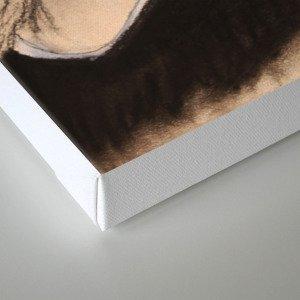 Raph TMNT Canvas Print