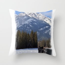 """Banff Wolf in Winter with Mt Cascade"" Throw Pillow"