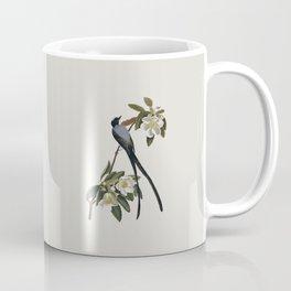 Fork-tailed Flycatcher Bird Illustration Coffee Mug