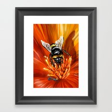 Bee on flower 1 Framed Art Print