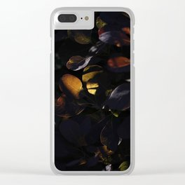 Sacramento Clear iPhone Case