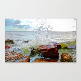 Texas Coast Canvas Print