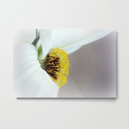 Keep your face to the sunshine... Metal Print