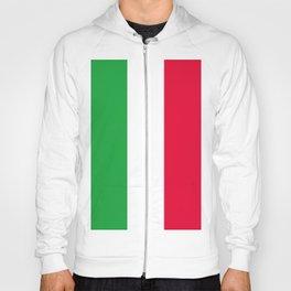 Italia flag Hoody