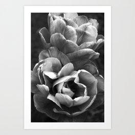 Summer Sights Art Print