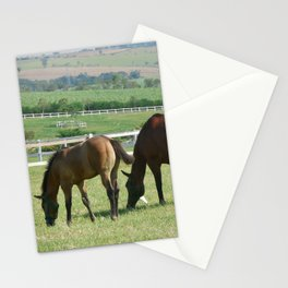 Haras 05 Stationery Cards