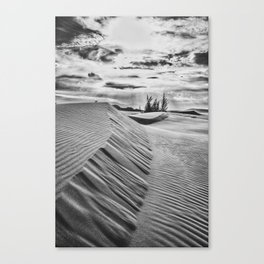 Sand hill Canvas Print