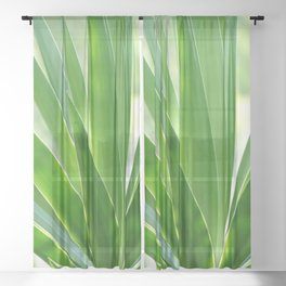 Yucca palm Sheer Curtain