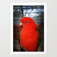 Beautiful Bird East Park Hull Art Print