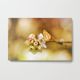 Blooms and Butterflies Metal Print