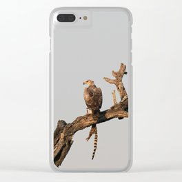 Hawk Eagle with its Catch Clear iPhone Case