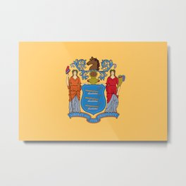 New Jersey State Flag Metal Print