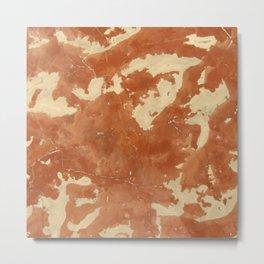 Brown marble texture background. Metal Print