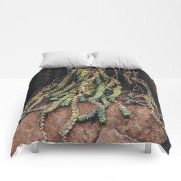 Succulent Strands Comforters