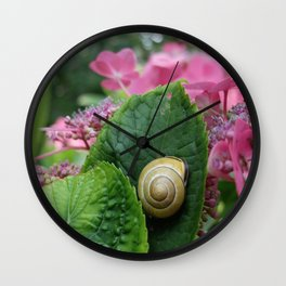marcel the shell Wall Clock