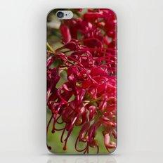 Flor roja iPhone Skin