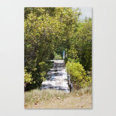 The path to the water Canvas Print