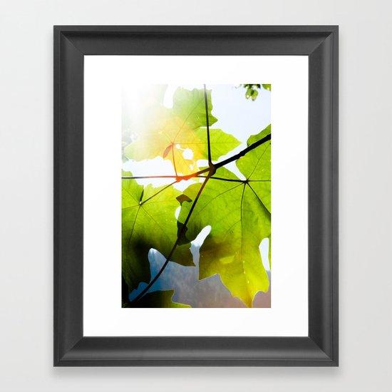 see the light Framed Art Print