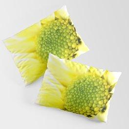 Yellow Daisy Macro Nature Photography Pillow Sham