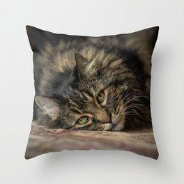 Niles Throw Pillow
