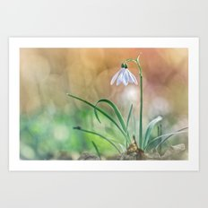 Match your nature with Nature Art Print