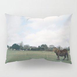 English horse roaming the prairies Pillow Sham