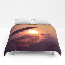 Sunset Feathers Comforters