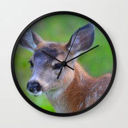 Sitka Black-Tail Fawn Wall Clock