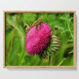 The thistle and a fly Serving Tray