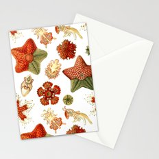 Sea Stars And Star Fish Stationery Cards