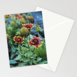 Seasonal Transition I.-by me jjv. Stationery Cards