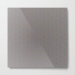 spc21 Metal Print