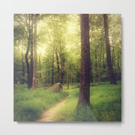 Dreamy Fairy Forest Metal Print