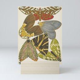 Moth Print by E.A. Seguy, 1925 #5 Mini Art Print