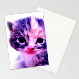 Blue Pink Cute Little Cat Stationery Cards