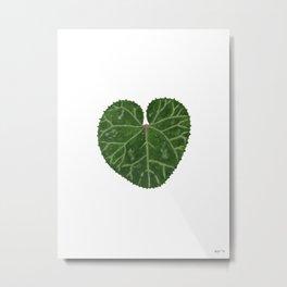 Cyclamen leaf Metal Print
